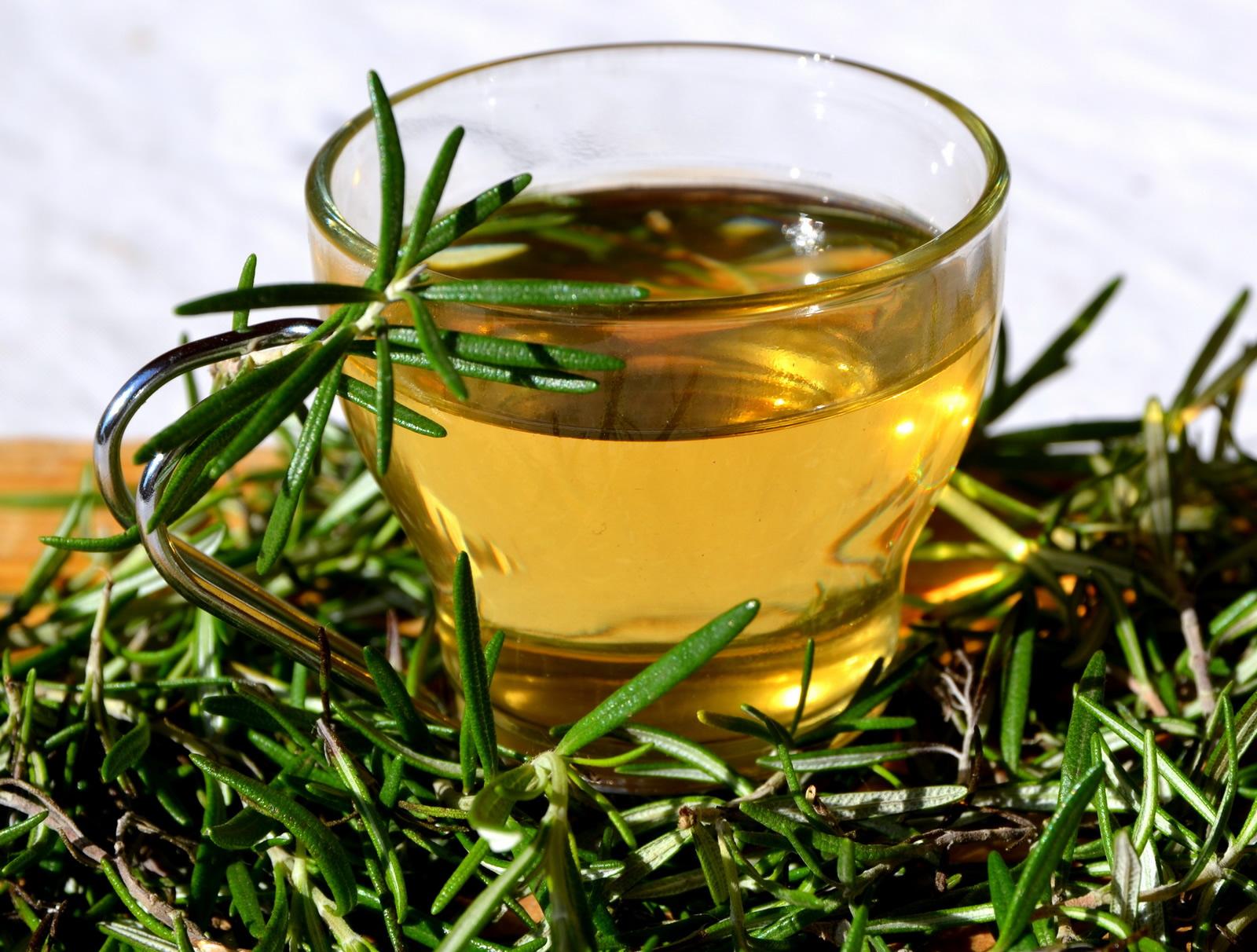 Rosemary Herbal Tea Gaia Therapeat