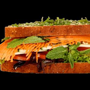 gaia-therapeat-immune-sandwich